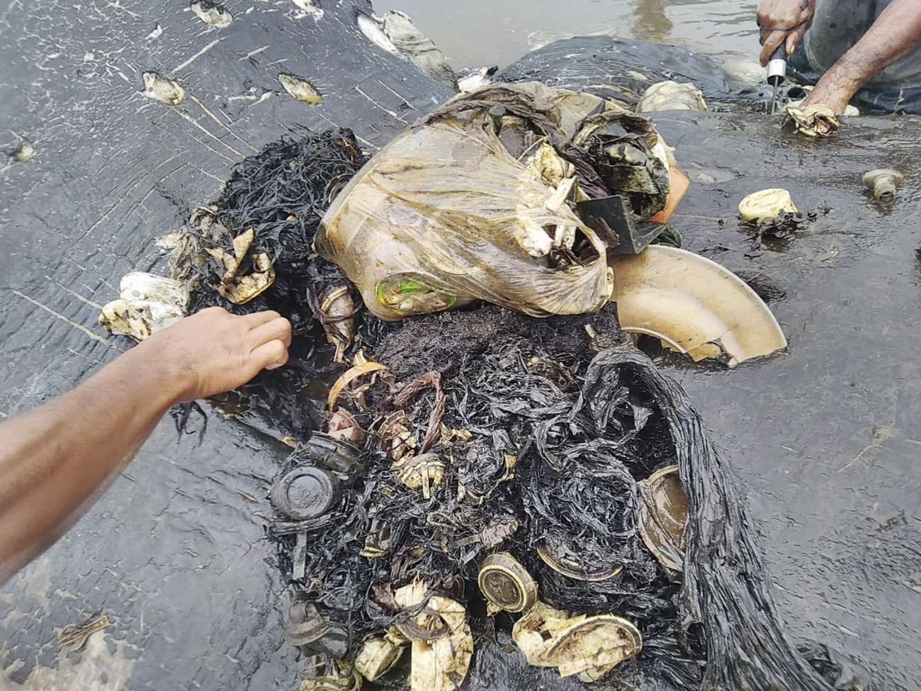 Kapota-sziget, 2018. november 21. A Természetvédelmi Világalap, a WWF indonéziai szervezete által közreadott kép egy ámbráscet gyomrában talált szemétről a Wakatobi Nemzeti Parkhoz tartozó Kapota-sziget partján, Délkelet-Szulavézi tartományban 2018. november 20-án. A közel hat kilogramm emészthetetlen hulladék a 9,5 méteres állat pusztulását okozta. MTI/EPA