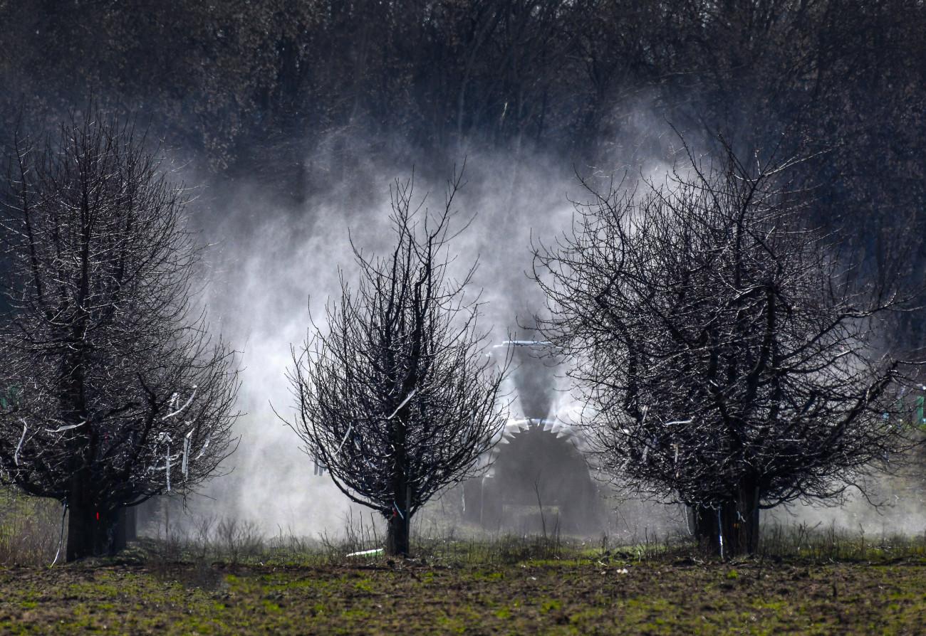 Rézhidrátos tavaszi lemosó permetezés gyümölcsfák védelmére. A vontatott permetező gép 1 hektárra 2000 liter vegyszert juttat ki. MTVA/Bizományosi: Oláh Tibor