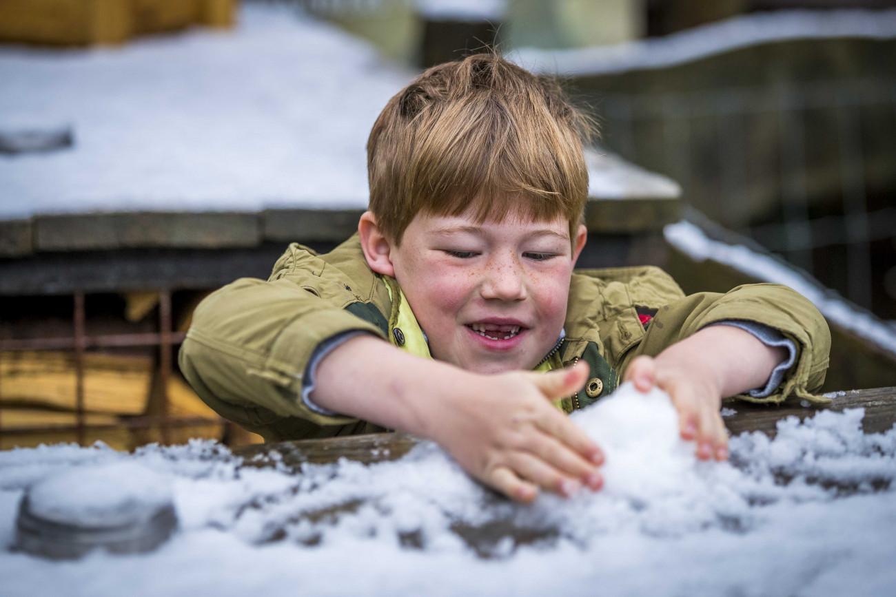 Vijlen, 2019. május 4. Hógolyót csinál egy fiú a dél-hollandiai Vijlenben 2019. május 4-én. Május elején legutóbb 1979-ben esett hó Hollandiában. MTI/EPA/ANP/Marcel van Hoorn