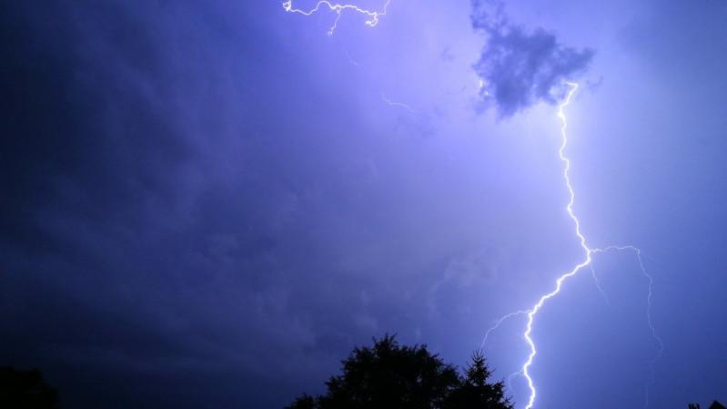 Image result for vihar