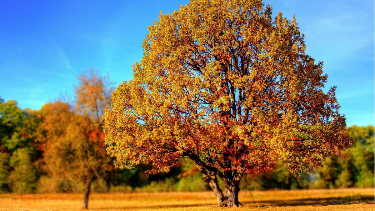 Még csak bemelegít az ősz, kiadták a figyelmeztetéseket