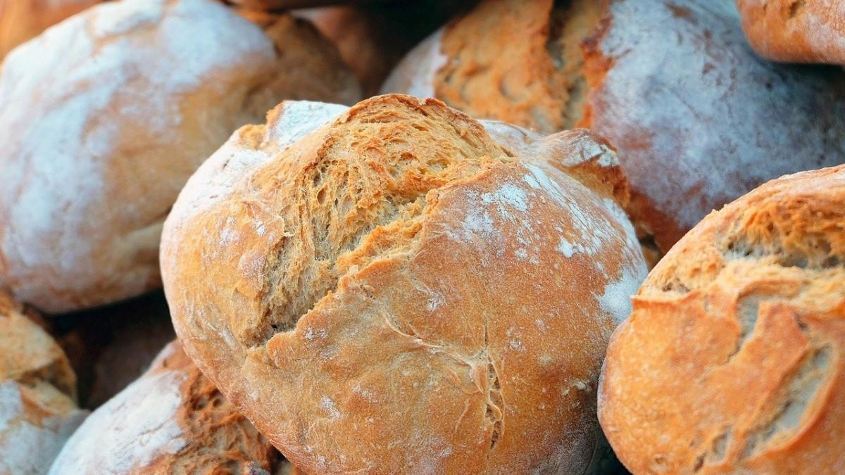 Hagyomány és innováció is díjat ért a Pékszövetség idei kenyérversenyén