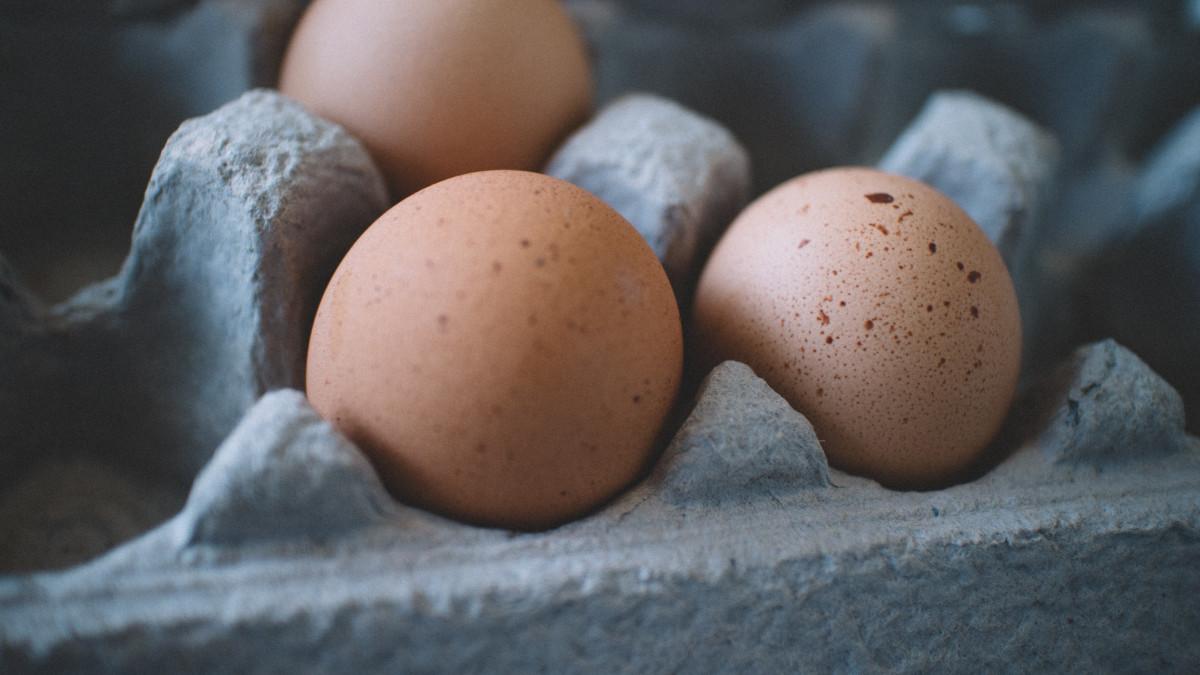 Jó híreket közöltek a tojásról